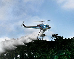 A helicopter releases water siphoned from Forest Lake reservoir during the project's dedication in September (see our on-line video of the demonstration). The technique was crucial in extinguishing a July wildland fire in the Forest.